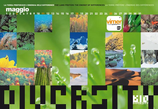 Vimer 2008 - gallery